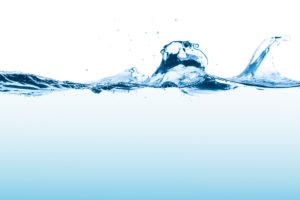 A água e a palavra