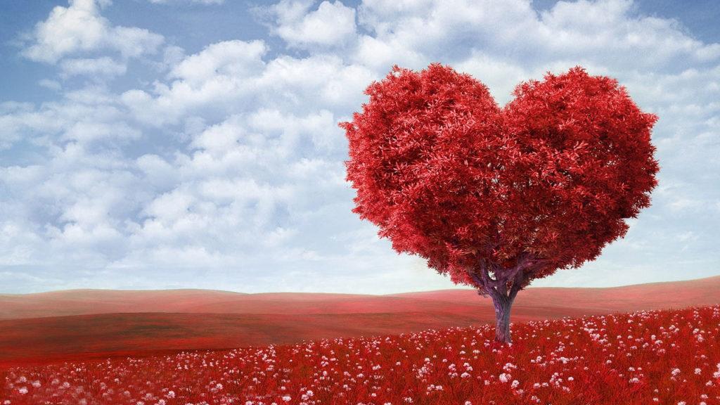 O amor de Deus é a nossa diferença